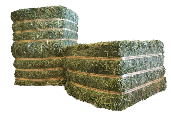 750 Kg Dehydrated Alfalfa Bales from Spain Natural Half-Cut and Full Bales
